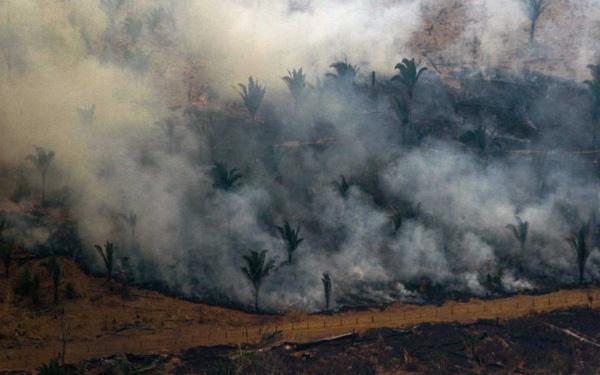 Rừng Amazon cháy suốt 3 tuần mới được hỗ trợ 22 triệu USD, Nhà thờ Đức bà Paris nhận gần 1 tỷ USD chỉ sau 24h hỏa hoạn