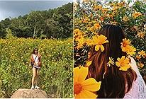 Đến Đà Lạt tháng 10 để rong ruổi trên cung đường hoa dã quỳ đẹp quên lối về