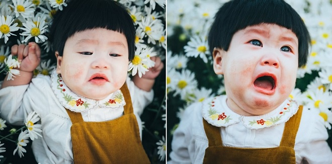"""""""Nhà bao việc"""" vẫn phải đi chụp ảnh, bé gái khóc nhè vẫn đáng yêu giữa vườn cúc họa mi"""