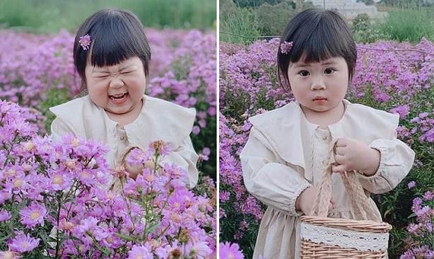 """""""Tan chảy"""" với loạt ảnh đáng yêu của bé gái Đà Lạt bụ bẫm tạo dáng ở vườn hoa"""