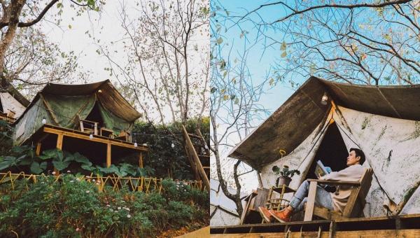 Đổ rạp trước homestay lều gỗ giữa vườn hồng lãng mạn như ngôn tình ở Đà Lạt