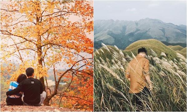 Vừa qua mùa cỏ lau trắng, Bình Liêu lại sang mùa lá đỏ đẹp như xứ sương mù