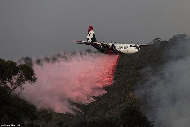 """Tiếp tục cháy rừng như """"Hỏa Diệm Sơn"""" ở Úc: Hơn nửa triệu héc ta rừng bị thiêu rụi"""
