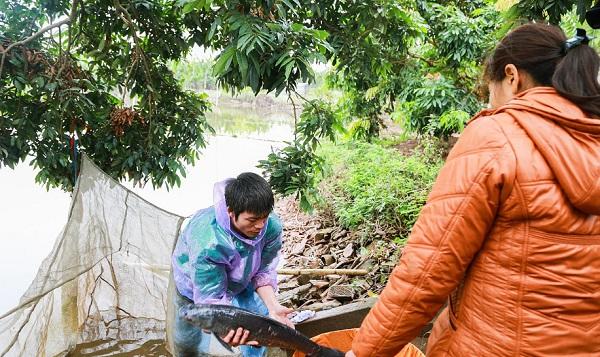 """""""Cày"""" trăm đơn hàng dịp Tết, dân làng Vũ Đại đeo mặt nạ phòng độc để ngồi kho cá"""