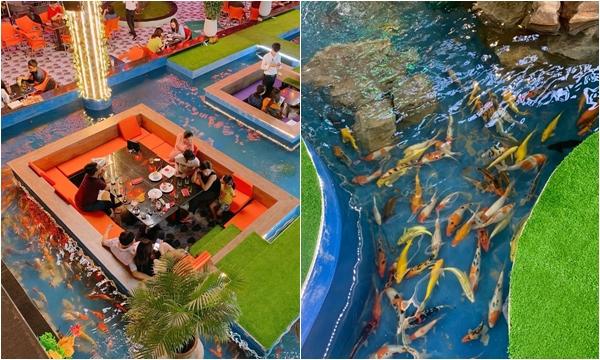 Hot rần rật quán cafe cá Koi siêu to khổng lồ khai trương ở quận 5 đúng dịp Tết này
