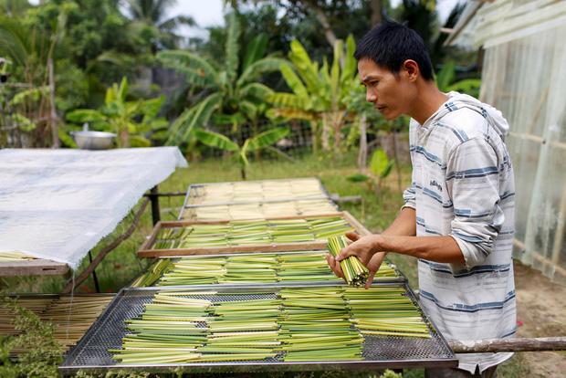 Ống hút cỏ bàng của doanh nhân trẻ Việt gây ấn tượng mạnh với cộng đồng quốc tế, nhận về nhiều lời khen