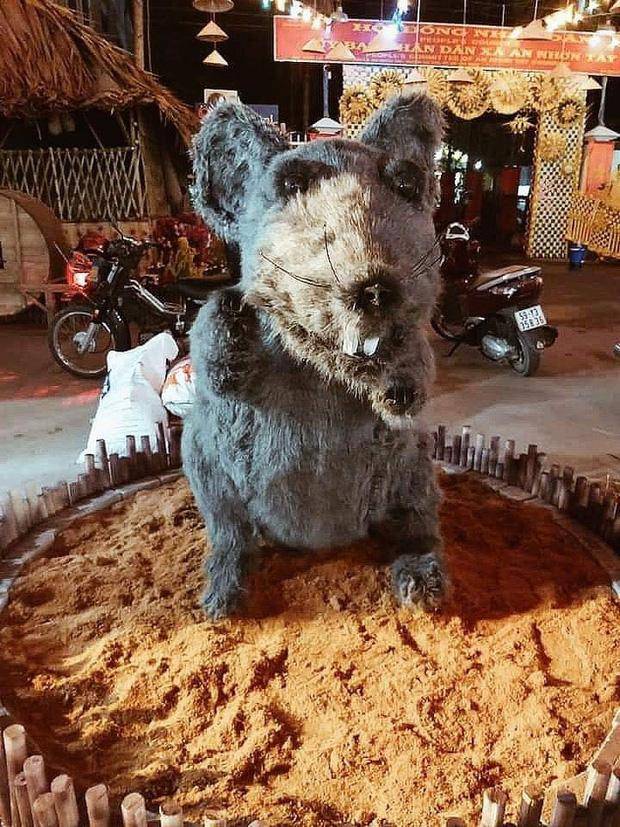 """Linh vật chuột ngày Tết mình đầy lông lá ở Củ Chi khiến đến cả mèo cũng phải """"khóc thét"""""""