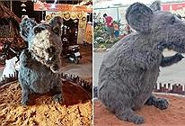 Linh vật chuột ngày Tết mình đầy lông lá ở Củ Chi khiến đến cả mèo cũng phải