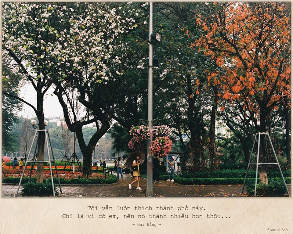 Tháng 2 gọi về mùa hoa ban tím đẹp nao lòng làm người ta muốn trao nhau đôi ba tấm ảnh