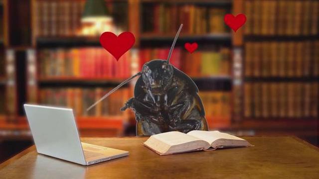 """Sự kiện """"trả thù"""" người yêu cũ dịp Valentine: Đặt tên gián, chuột, rắn theo tên người yêu cũ rồi """"chén"""""""