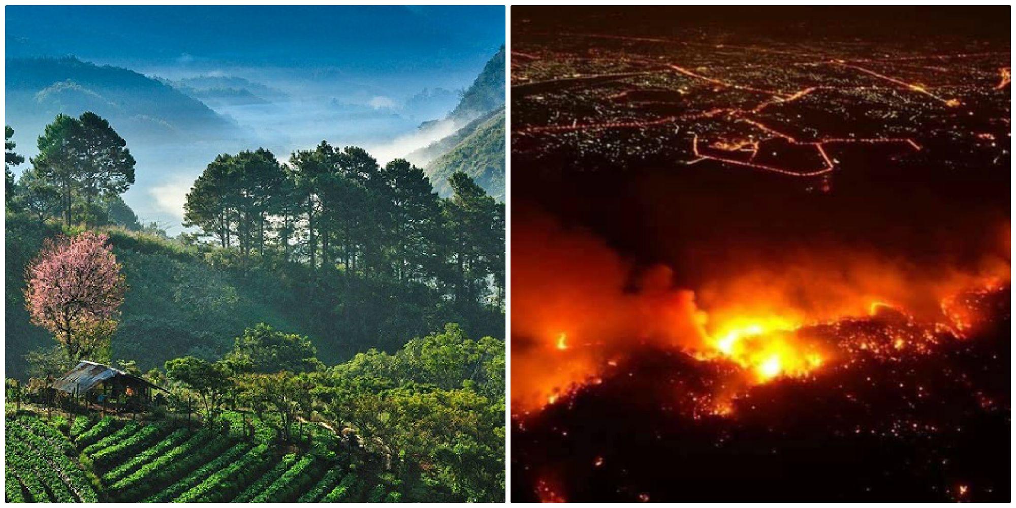 """""""Đóa hoa hồng phương Bắc"""" Chiang Mai ở Thái Lan đang đối mặt với cháy rừng lớn"""