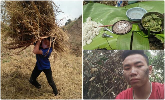 Cảm thương nam sinh người Mông đi làm thuê, đào củ rừng lấy tiền mua thẻ điện thoại học online và sống qua ngày
