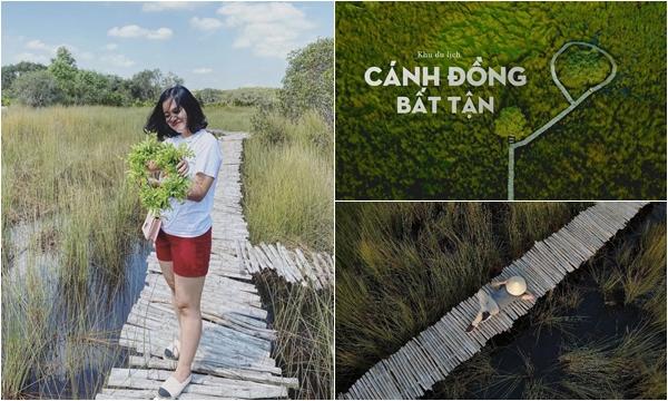 """Sát vách Sài Gòn xuất hiện """"Cánh đồng bất tận"""" cảnh đẹp như phim, chụp góc nào là """"nghìn likes"""" góc ý"""