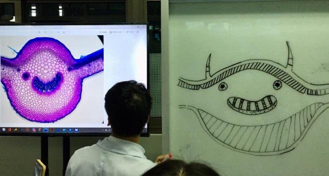 """Lên bảng làm bài môn Sinh học nhưng lại thể hiện năng khiếu vẽ biếm họa, trò khiến thầy """"đứng hình 5 giây"""""""