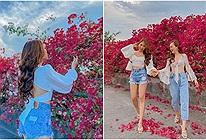 Xuất hiện cây cầu hoa giấy bạt ngàn, team Hà Nội lại có thêm một khu xinh xắn để tha hồ check-in