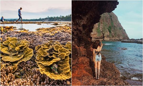 """Lùng ngay """"Khu vườn san hô trên cạn"""" đẹp thần sầu ít người biết ở Phú Yên"""