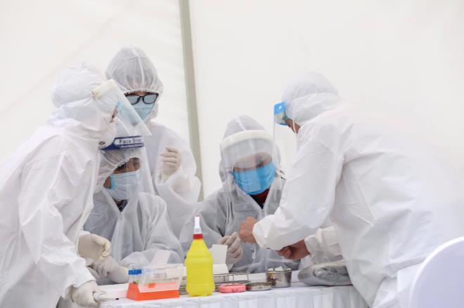Thêm 7 ca mắc Covid-19 mới, Việt Nam có 342 người nhiễm virus Corona