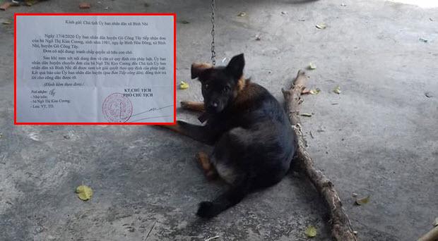 """2 gia đình tranh chấp quyền nuôi dưỡng, chú chó tăng cân vù vù vì bị """"tạm giữ"""" tại trụ sở công an"""
