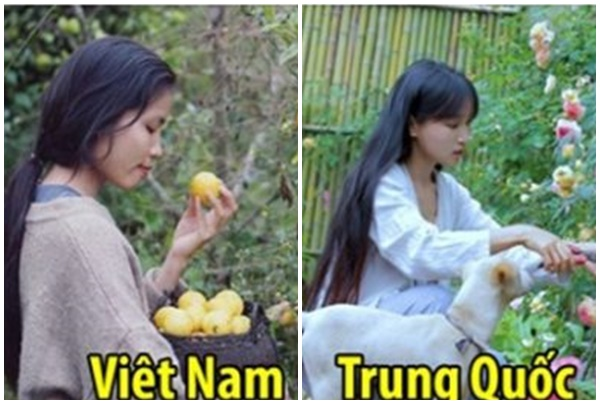 """Bị ném đá rào rào, Youtuber Việt """"đạo nhái Lý Tử Thất"""" phản ứng chạy trốn: Khóa FB, im như thóc"""