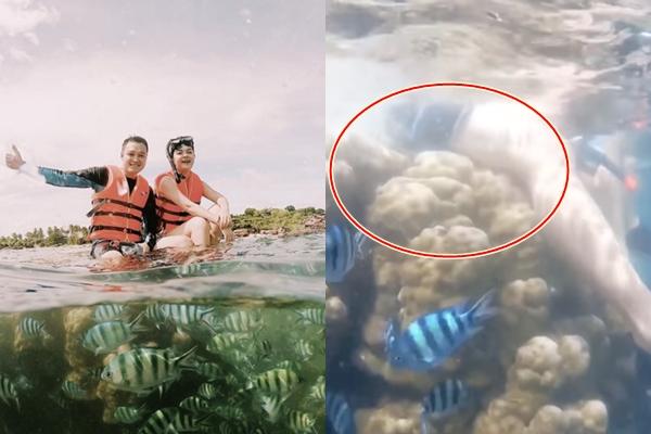 Dửng dưng ngồi lên san hô, Phạm Quỳnh Anh và Quang Vinh bị lên án vì phá hoại tài nguyên biển
