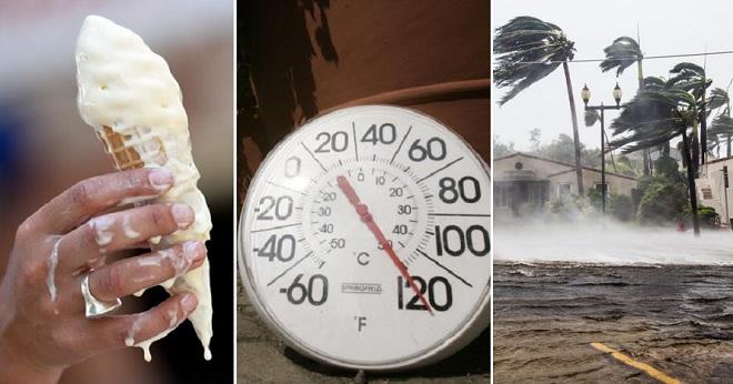 12 bức ảnh gây khó chịu chứng minh mùa hè chính là mùa tồi tệ nhất đối với hầu hết mọi người