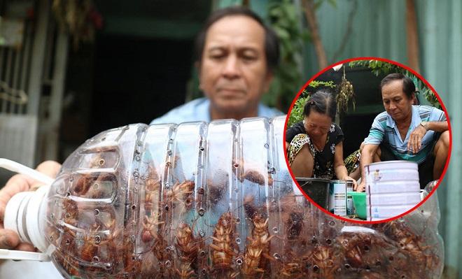 Hơn 20 năm sống bằng nghề bắt gián ở Sài Gòn