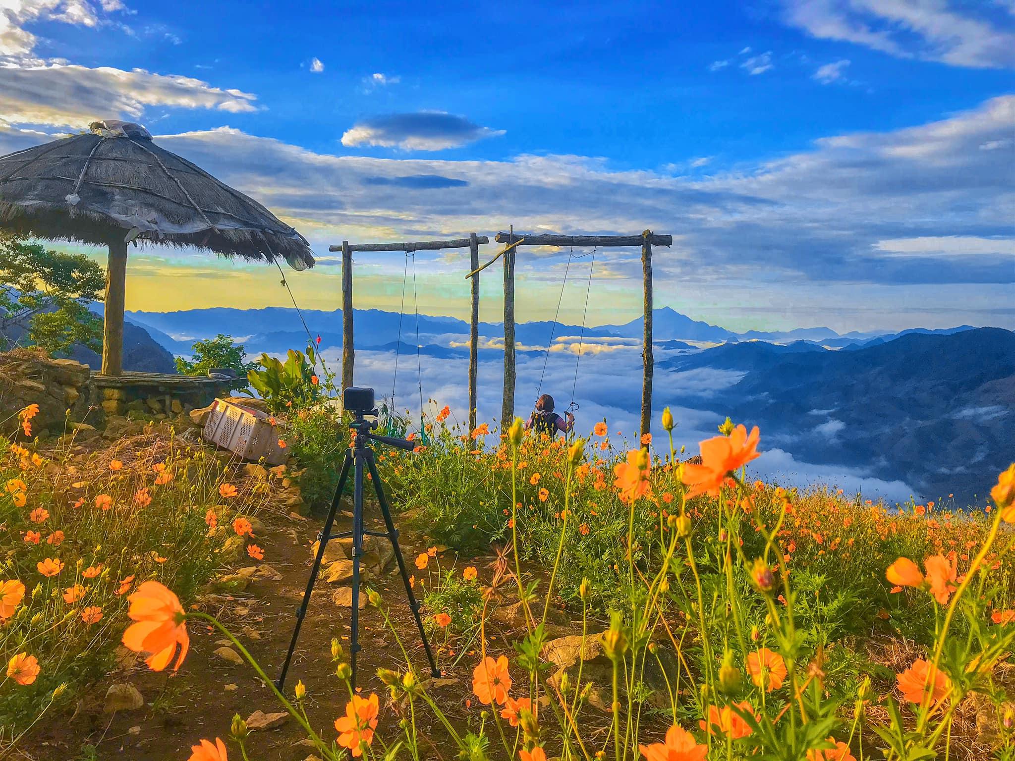 Lạc vào cánh đồng hoa dại nằm giữa biển mây đẹp tựa cổ tích ở Mai Châu