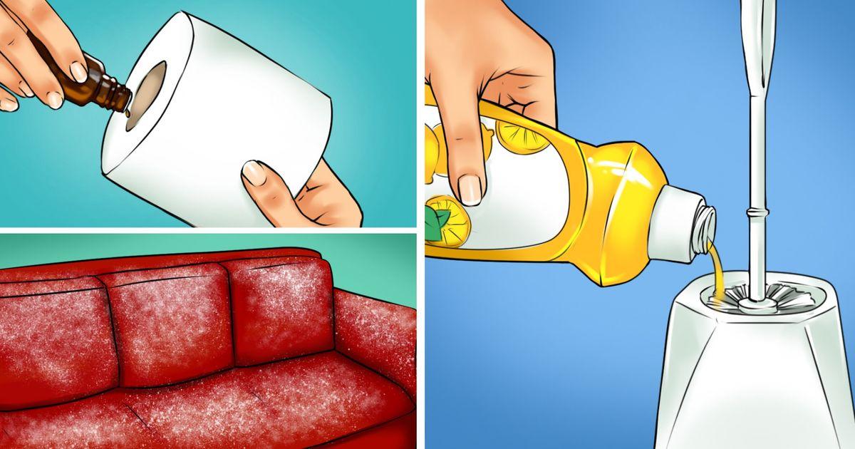 15 cách khử triệt để mùi hôi cho căn nhà của bạn