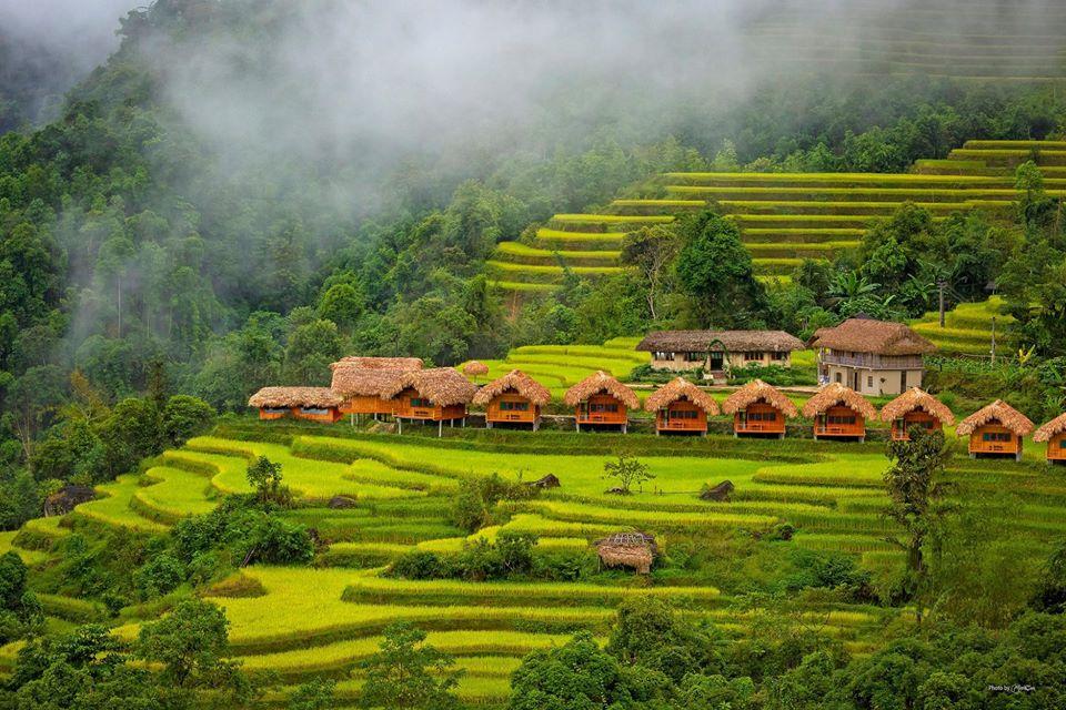 Ghim lại ngay homestay ngắm mùa lúa chín đẹp xuất sắc ở Hà Giang