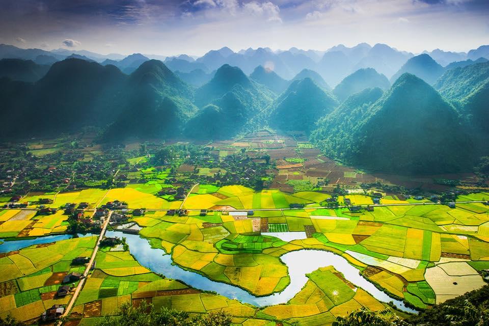 Về xứ Lạng thổn thức trước mùa lúa chín vàng óng ả ở thung lũng Bắc Sơn