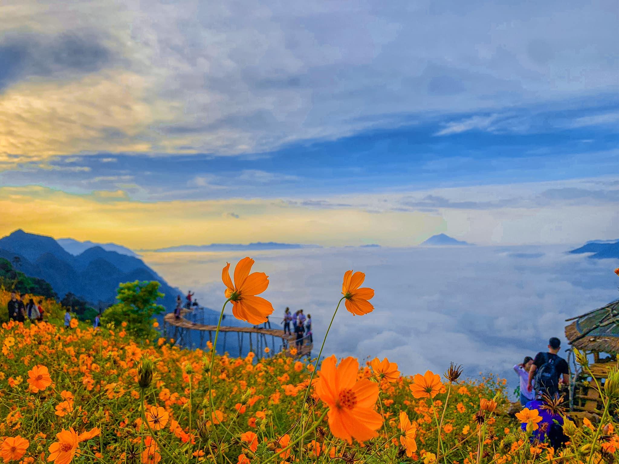 Không xa như Đà Lạt, dễ đi hơn Tà Xùa, mình cùng nhau săn mây bồng bềnh ở Hang Kia, Mai Châu nhé