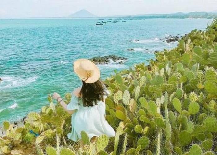 Phú Yên, Bình Định mở cửa đón khách du lịch trở lại sau thời gian đóng cửa vì dịch Covid-19