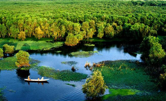 """Tạm quên lá vàng miền Bắc để """"đẩy thuyền"""" về rừng tràm Trà Sư mùa nước nổi đẹp xao xuyến"""