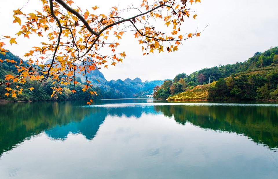 Sang thu, gọi tên thiên đường mùa thu Cao Bằng đẹp tựa thước phim Châu Âu