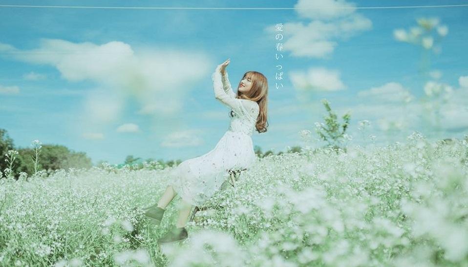 """""""Đưa em về thanh xuân"""", về với mùa hoa cải nở trắng trời cao nguyên Mộc Châu"""