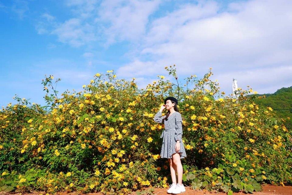 Tháng 10 này, ghé Đà Lạt để rong ruổi trên cung đường hoa dã quỳ đẹp ngây ngất