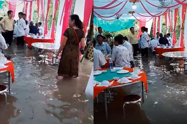 Đám cưới ngập trong biển nước: Khách đến vừa được ăn ngon vừa được đàn cá massage thư giãn bảo sao ai nấy cứ cười tươi rói