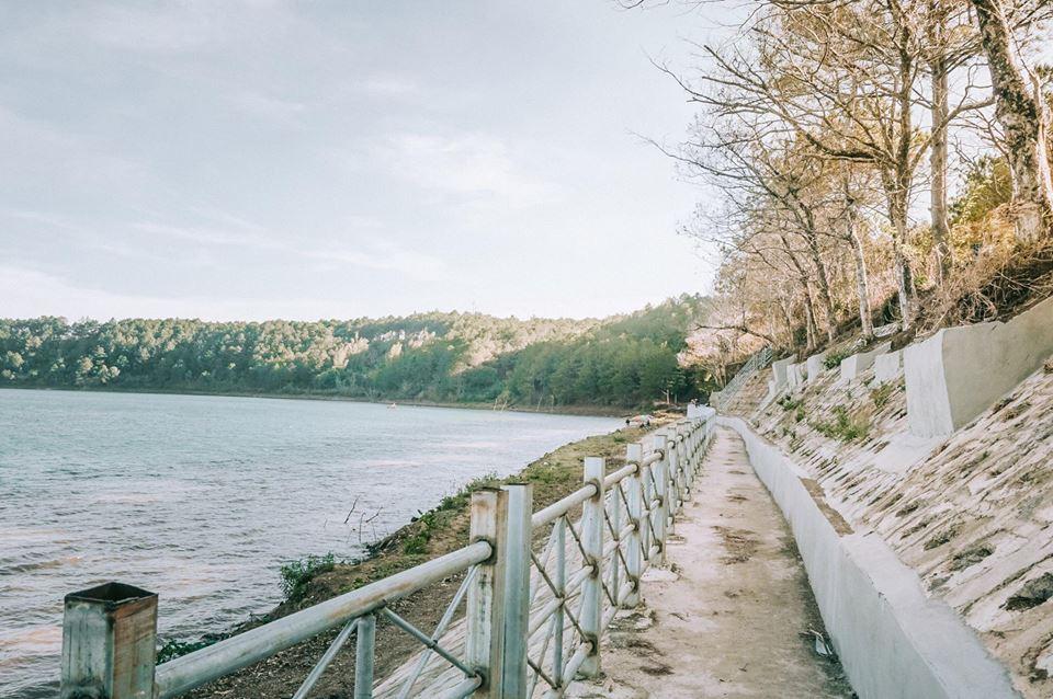 Mùa thu lãng mạn như bản tình ca Hàn Quốc ở con đường lá vàng Gia Lai này