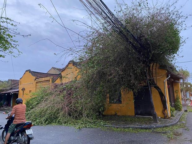 Xót xa trước khung cảnh Hội An - đô thị cổ đẹp nhất Đông Nam Á tan hoang sau cơn bão số 9